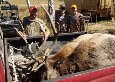 Hunters with their two elk in back of truck